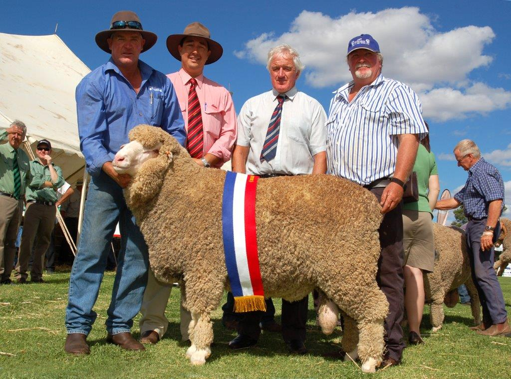 Show and Sale Results